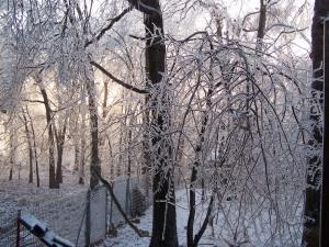 dawn ice storm
